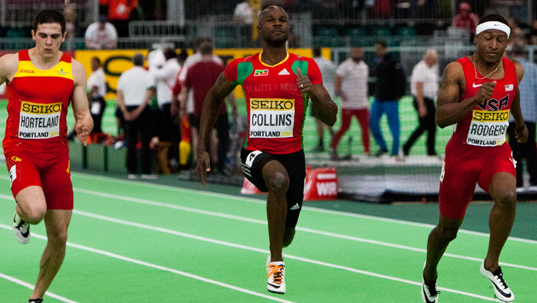 COLLINS 2016
