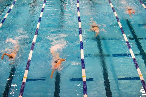 Swimming 659903web.jpg 1452010123